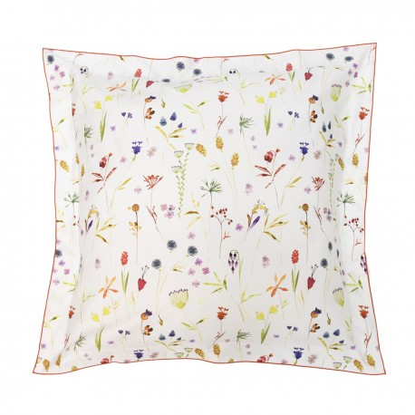 Pillowcase, Botany
